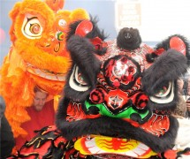 Chinese Dragon Faces 2009 Chinese NY
