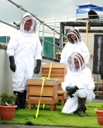 Staff from St Georges with the hive