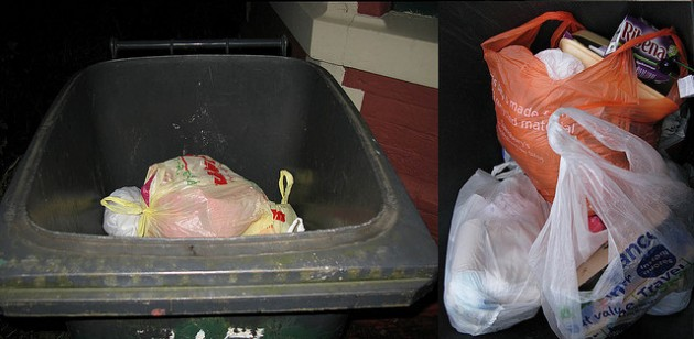 Food waste can go into standard grey bins