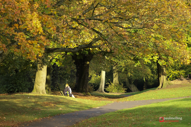 Moor Park Pictured In All Its Autumnal Glory Blog Preston