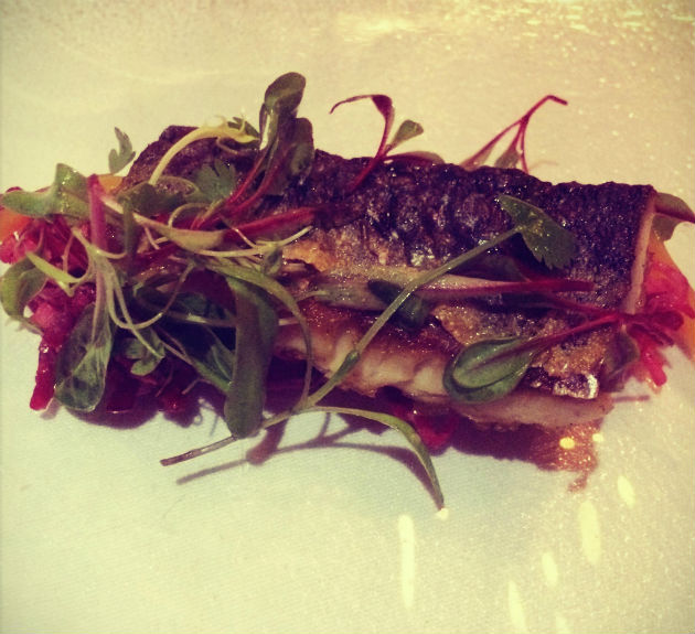 The mackerel starter