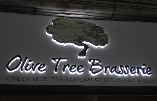 Olive Tree Opening 2