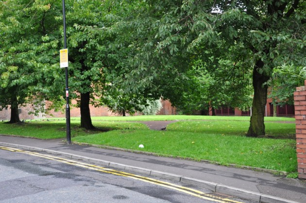 Grassy knoll Crooked Lane, Preston
