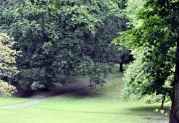 Winckley Square Gardens Feature