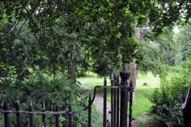 Winckley Square, Preston - From North Side