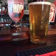 ferret beer 2