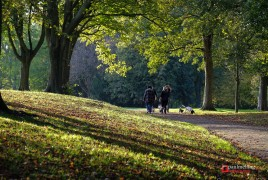 A stroll in Moor Park Pic: Paul Melling