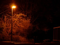 Street lights have been tampered with in Preston Pic: Rory Cocker