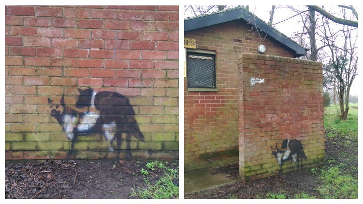"""Mummy, what's that doggy doing?"" - the graffiti in Moor Park Pic: Andrew Hobbs"