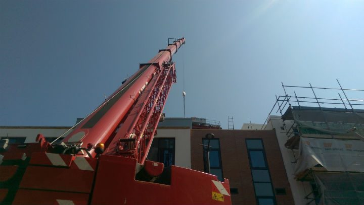 Get a crick in your neck looking up this crane!