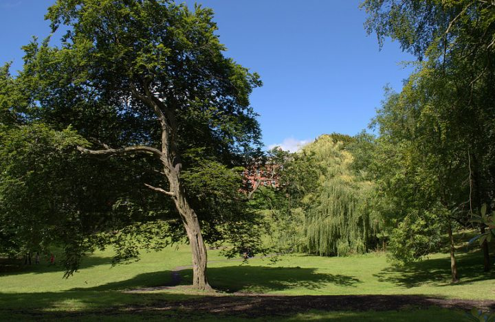 Summer in Winckley Square Pic: Tony Worrall