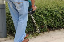 Need your hedge trimmed? Use the safe trader scheme to find someone trustworthy Pic: toolstop