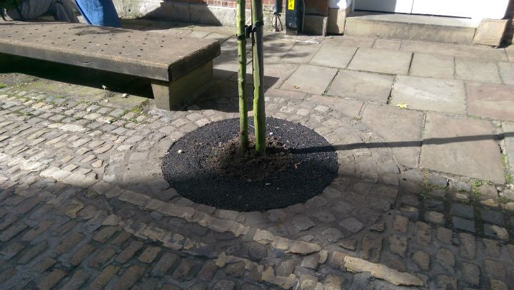 Another view of the tarmac tree in Winckley Street