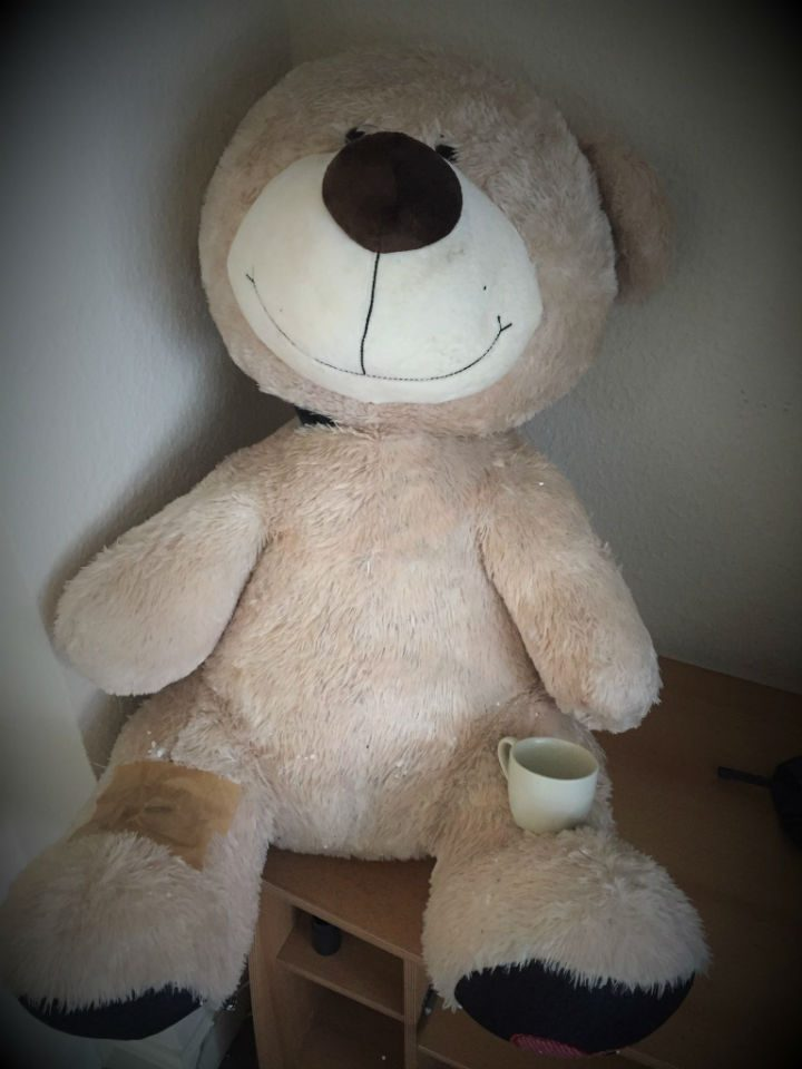 There was a happy ending for the teddy