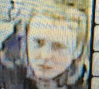 Police have issued this CCTV picture