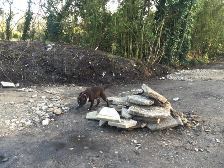 Some of the building waste fly-tipped