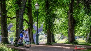A cyclist in Avenham Park Pic: Paul Melling