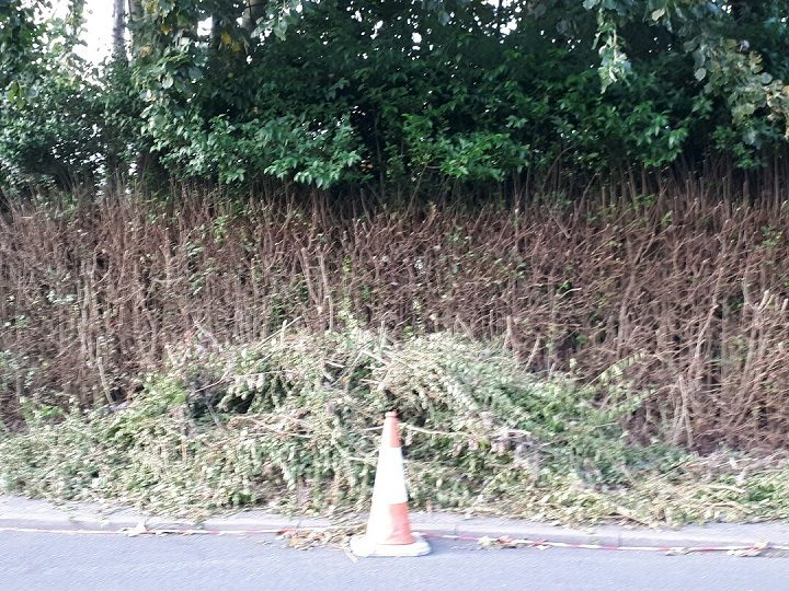 One of the mounds of cuttings left in South Meadow Lane