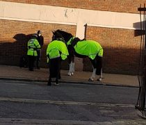 Preston Police made after the man while on horseback