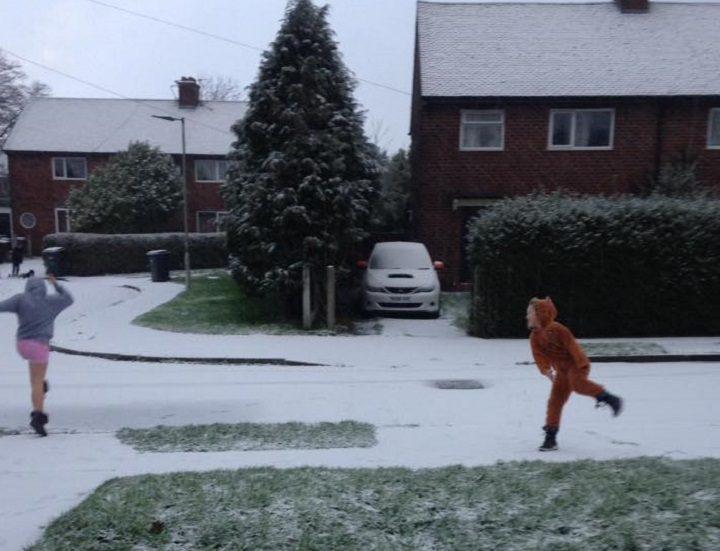 A snowball fight in Penwortham - nice onesie! Pic: Cherry Alston