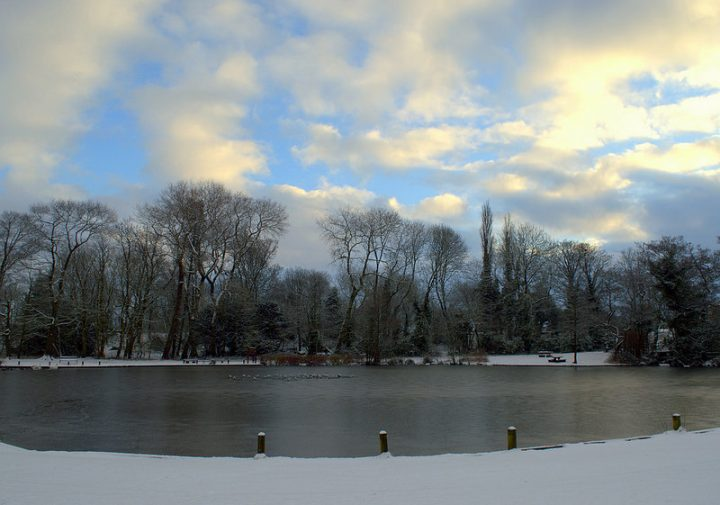 A frozen lake in Haslam Park Pic Tony Worrall