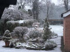 How one back garden looked in Penwortham on Thursday Pic: Bob Randell