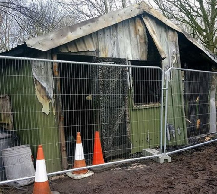 Damage to the shed at the Serpentine allotment site