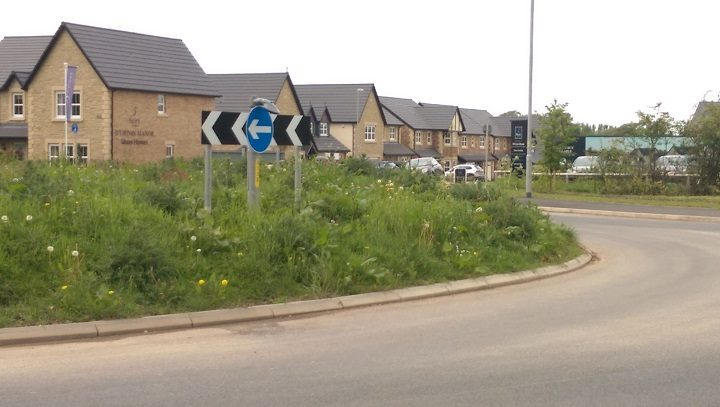 The unmown roundabout Pic: Blog Preston