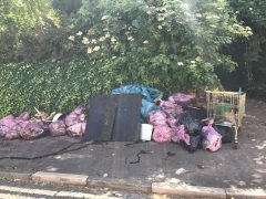 The collection of rubbish after last year's canal clean up
