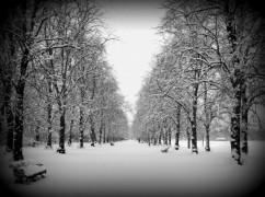 snow covered haslam park, preston