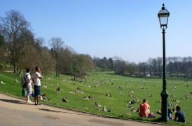 avenham park in spring