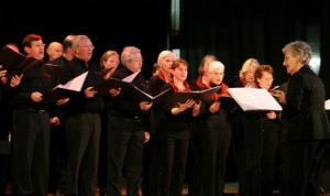 Not all choirs need to be professional like this, volunteer choirs are more relaxed