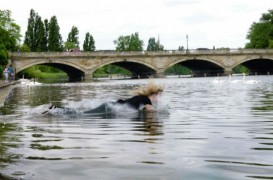 Amy Sharrocks making a splash