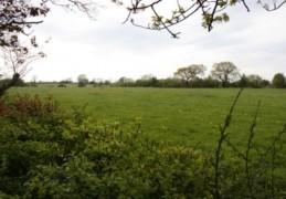 Green fields under threat from development
