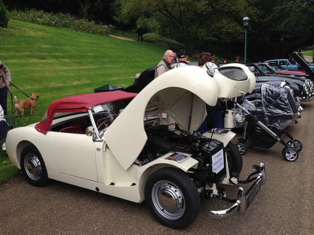 Vintage cars in Miller Park. Pic: Lee Allen