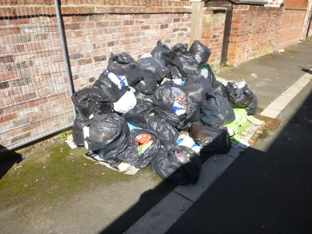 The mound of bags found dumped