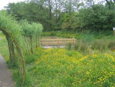 Grimsargh Green pond is to be enhanced thanks to funding