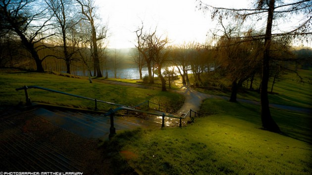 Wide angle shot of Avenham Park steps Pic: Matthew Lavaery