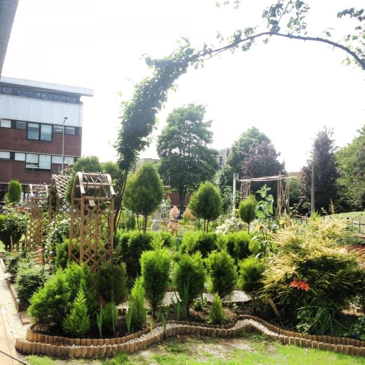 A view of Jam's garden