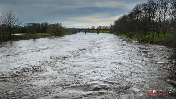 The River Ribble near Avenham Park on Sunday Pic: Paul Melling