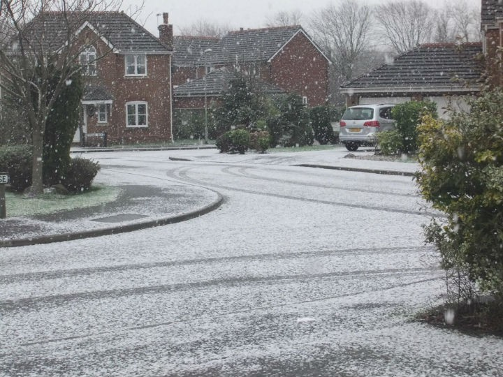Snow settling by Dave Canning