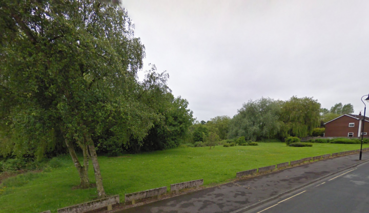 The plot of green space in Chapman Road Pic: Google