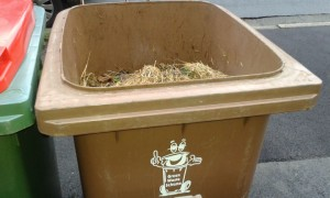 A charge would be made for each brown bin collected by the council