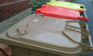 Food waste can currently go in brown bins alongside garden waste