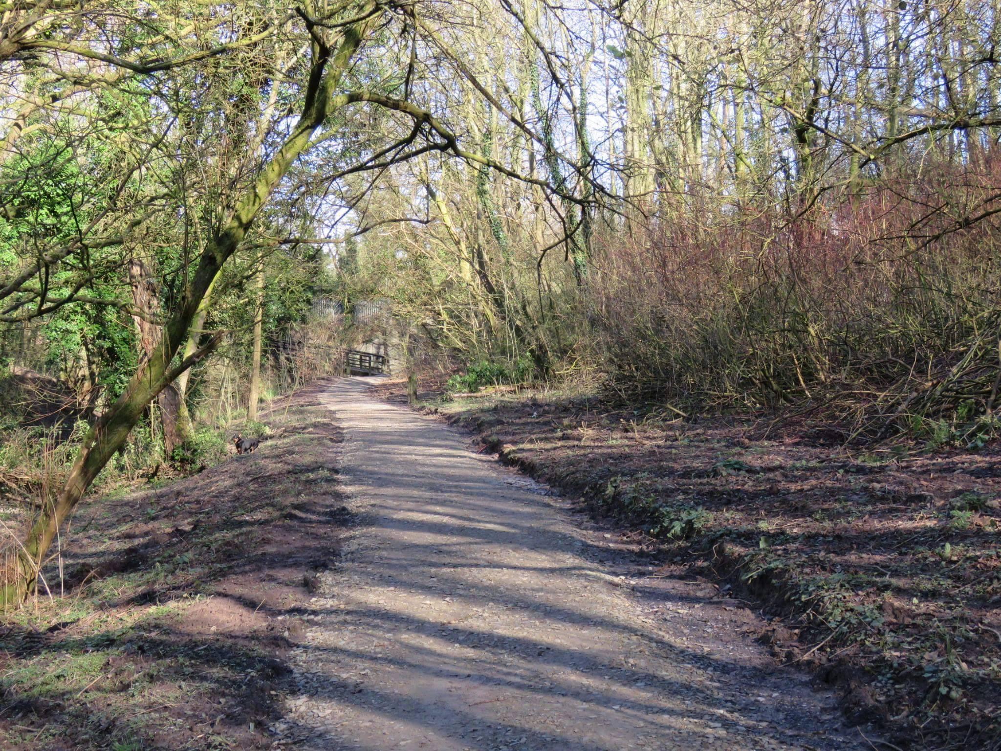 Fulwood paths undergoing renovation. Picture: Natalie Milton