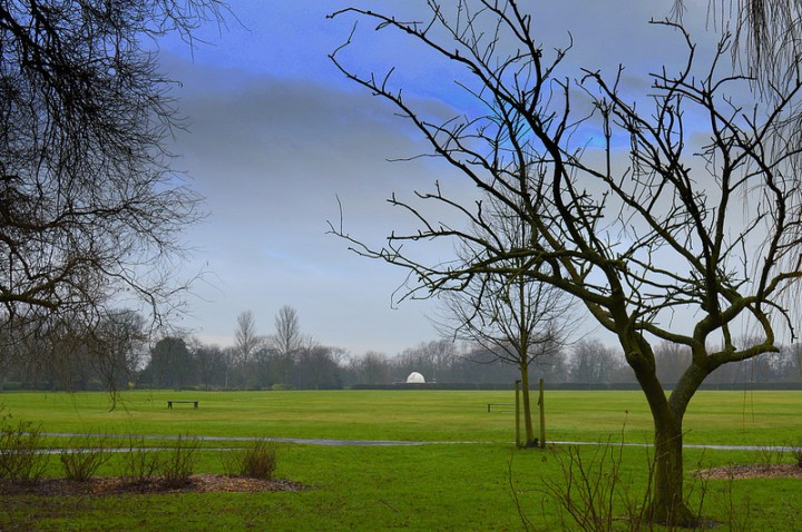 A view across Moor Park Pic: Tony Worrall