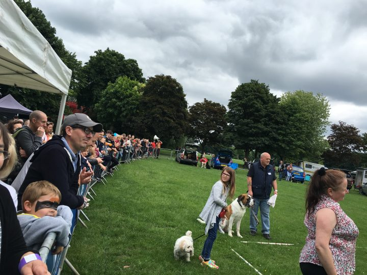 Hundreds watched on as the dog show was underway.