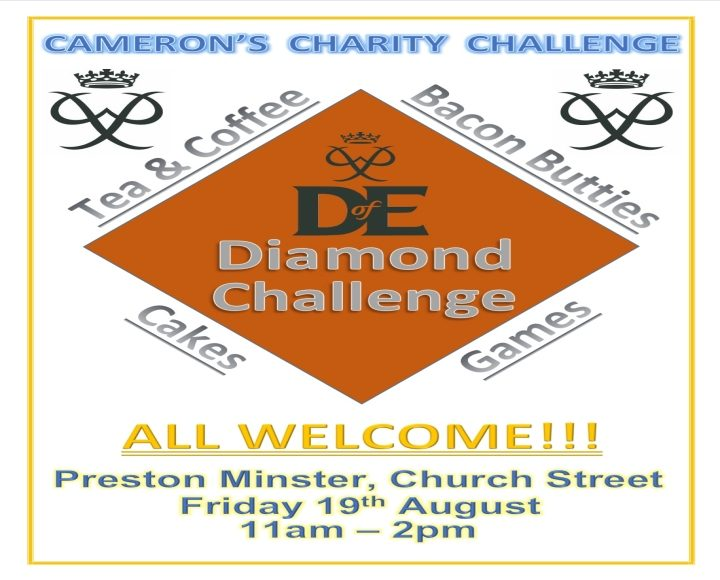 Camerons Challenge Poster
