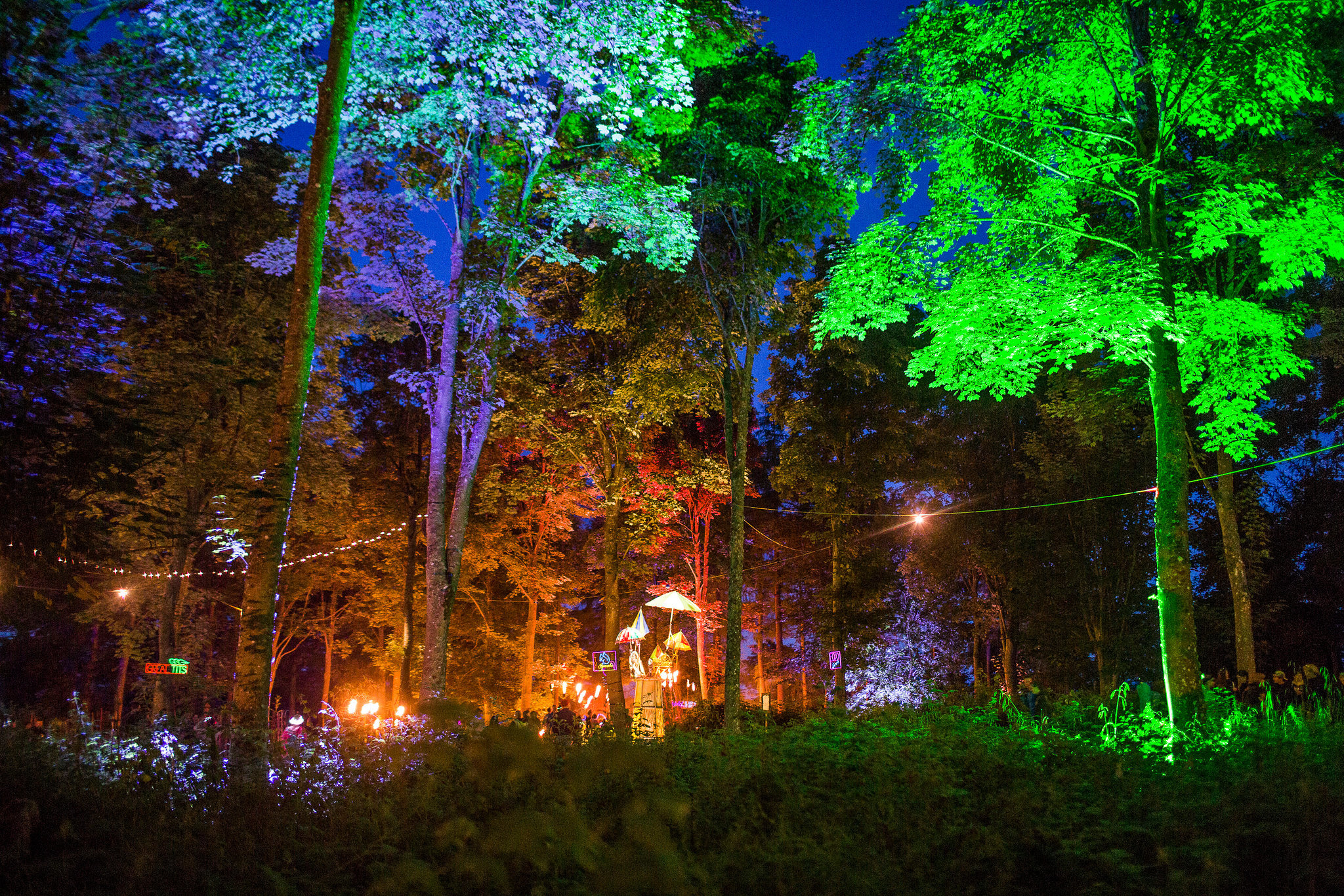 The woods at night at Kendal Calling. Credit: Tom Martin