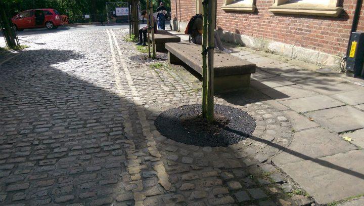 The tarmac tree outside Winckleys coffee house in Winckley Street